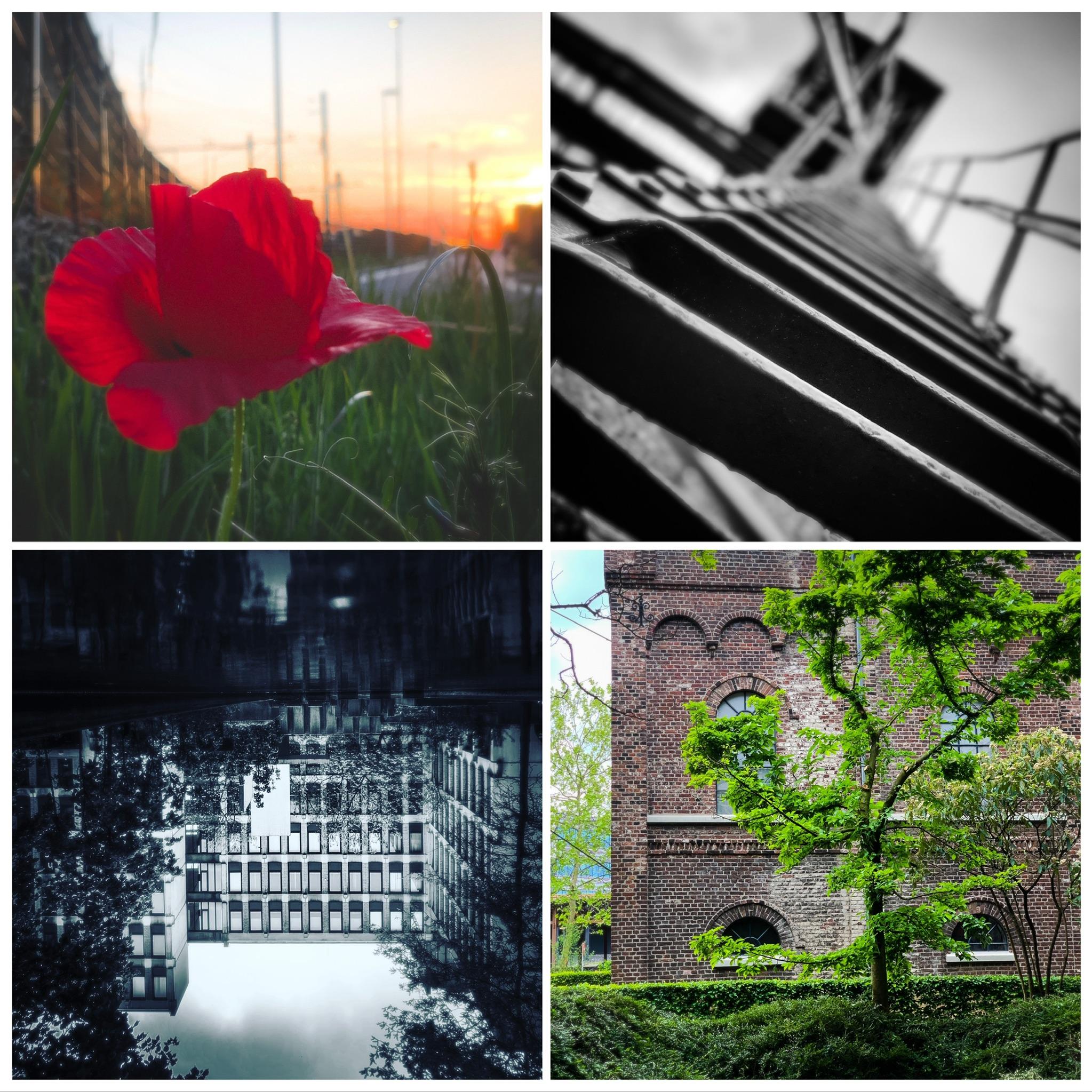 WORKSHOP • Beter leren fotograferen met je smartphone @ La Sirel juli