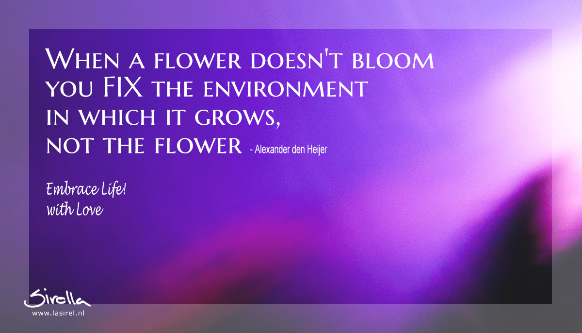LaSirel_Sirella_Quote_Flower